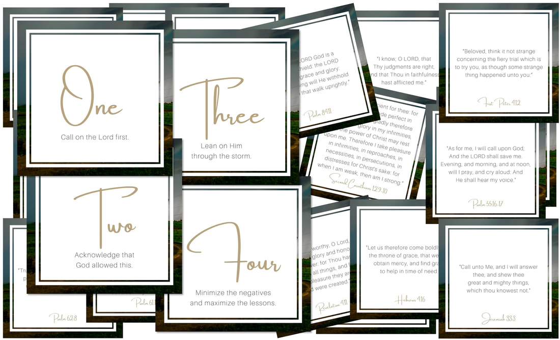 ​CALM in the Storm Scripture Memory Cards