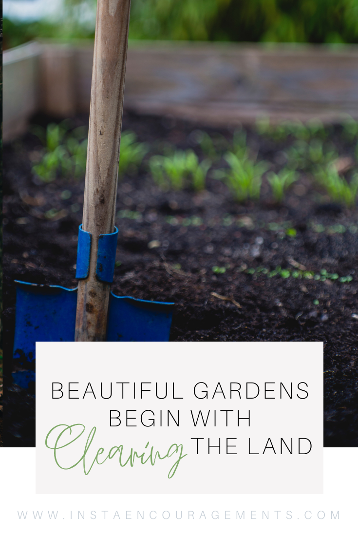 Beautiful Gardens Begin With Clearing the Land