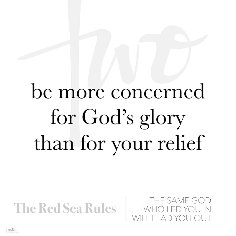 The Red Sea Rules #2