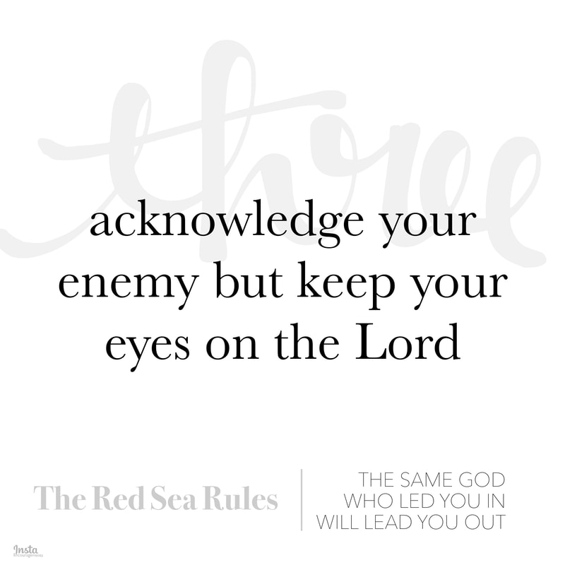 The Red Sea Rules #3