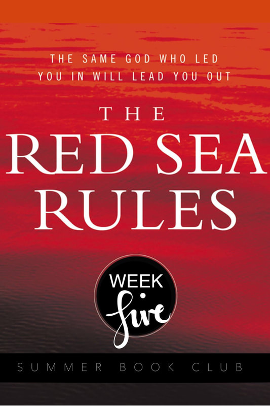 The Red Sea Rules: Week 5 One night when I was worried sick about something, I found four words sitting quietly on page 1291 of my Bible. I'd read them countless times before, but as I stared at them this time, they fairly flew at me like stones from a slingshot. The four words, now well underlined in my New International Version, are leave room for God.