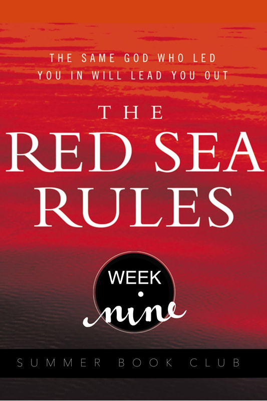 The Red Sea Rules: Week 9