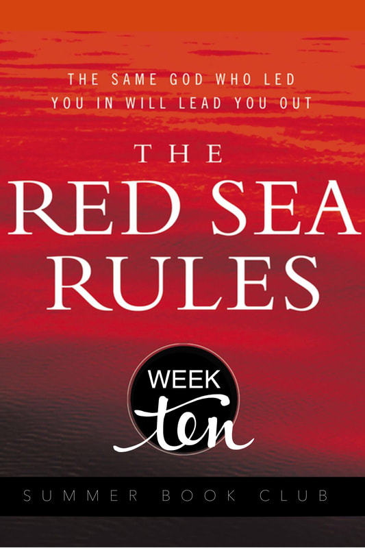 The Red Sea Rules: Week 10