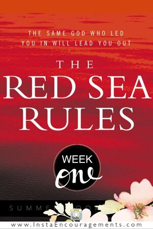 The Red Sea Rules: Week 1