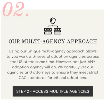 CAC Multi Agency Approach